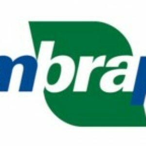 Embrapa promove Irrigaweb, capacitação em uso e manejo de irrigação