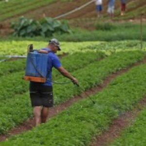 """""""Agrotóxicos, Alimentos e Meio Ambiente' é tema do II AgroNordeste que começa quarta-feira"""