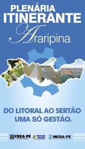 Banner Itinerante Araripina-01 (1)