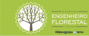 Read more about the article 12 de julho   Dia do Engenheiro Florestal