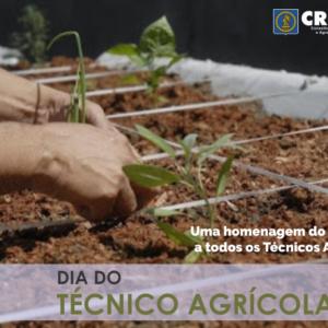 CREA-PE comemora hoje, o Dia do Técnico Agrícola