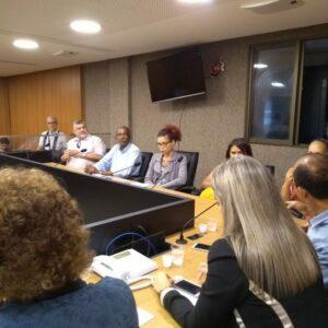 CREA-PE participa de audiência pública sobre acessibilidade na ALEPE