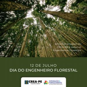 """Crea-PE: Parabéns a todos os engenheiros florestais que trabalham diariamente por um mundo melhor e mais """"verde""""!"""