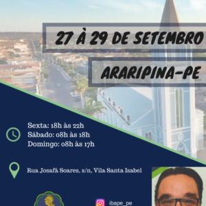 IBAPE-PE oferece curso engenharia legal com ênfase em perícias em edificações em Araripina