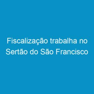 Fiscalização trabalha no Sertão do São Francisco