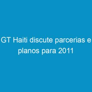 GT Haiti discute parcerias e planos para 2011