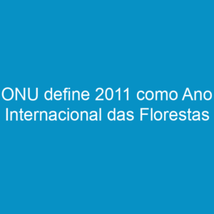 ONU define 2011 como Ano Internacional das Florestas