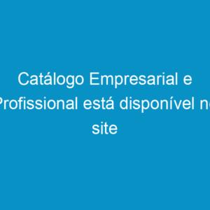 Catálogo Empresarial e Profissional está disponível no site