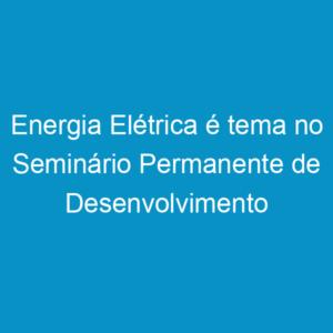 Energia Elétrica é tema no Seminário Permanente de Desenvolvimento