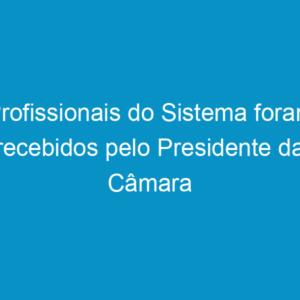 Profissionais do Sistema foram recebidos pelo Presidente da Câmara