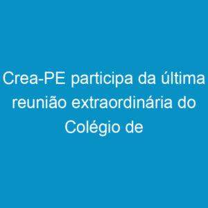 Crea-PE participa da última reunião extraordinária do Colégio de Presidentes
