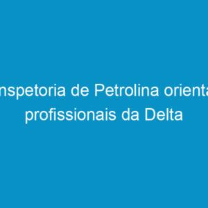 Inspetoria de Petrolina orienta profissionais da Delta