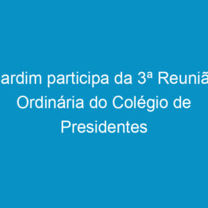 Cardim participa da 3ª Reunião Ordinária do Colégio de Presidentes do NE