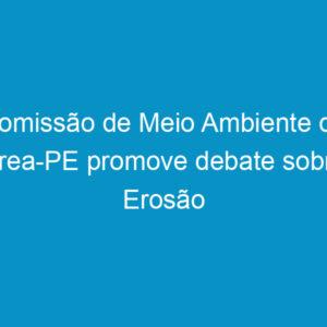 Comissão de Meio Ambiente do Crea-PE promove debate sobre Erosão Marinha