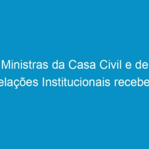 Ministras da Casa Civil e de Relações Institucionais recebem lideranças do Sistema Confea/Crea