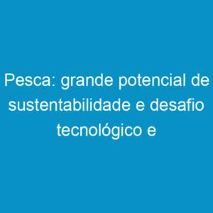 Pesca: grande potencial de sustentabilidade e desafio tecnológico e profissional dos próximos anos