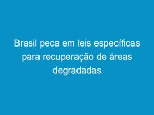 Read more about the article Brasil peca em leis específicas para recuperação de áreas degradadas
