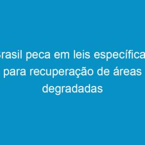 Brasil peca em leis específicas para recuperação de áreas degradadas