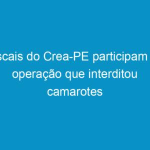 Fiscais do Crea-PE participam de operação que interditou camarotes das Virgens Abraça Brasil