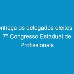 Conheça os delegados eleitos no 7º Congresso Estadual de Profissionais