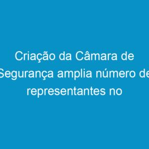 Criação da Câmara de Segurança amplia número de representantes no plenário