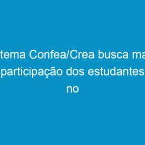 Sistema Confea/Crea busca maior participação dos estudantes no sistema profissional