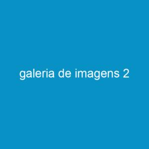 galeria de imagens 2