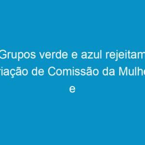 Grupos verde e azul rejeitam criação de Comissão da Mulher e suspensão da Resolução nº 1.010
