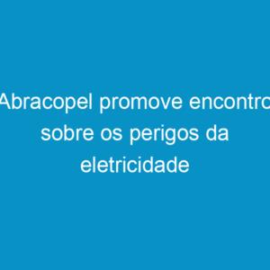 Abracopel promove encontro sobre os perigos da eletricidade