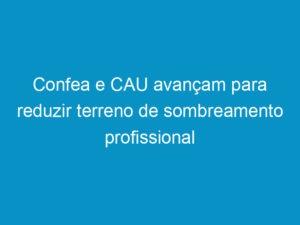 Read more about the article Confea e CAU avançam para reduzir terreno de sombreamento profissional