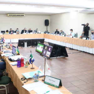 Crea-PE sedia Reunião da Coordenadoria de Câmaras Especializadas de Engenharia Florestal