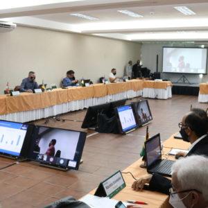 Reunião de Câmaras Especializadas de Engenharia Florestal elabora propostas para categoria